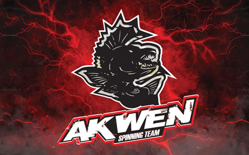 projekt logo drużyny