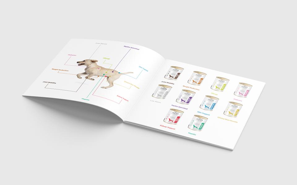 wydruk broszura na zszywki 4vets 5
